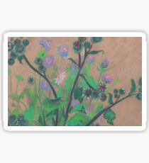 Thistle and clover, soft pastels, life sketch, summer flowers Sticker