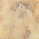 Sahara by VenusOak