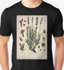 Köhler's Medizinal Pflanzen in naturgetreuen Abbildungen mit kurz erläuterndem Texte  Atlas zur Pharmacopoea 1883 1914 V1 062 Lavandula Vera T-Shirt