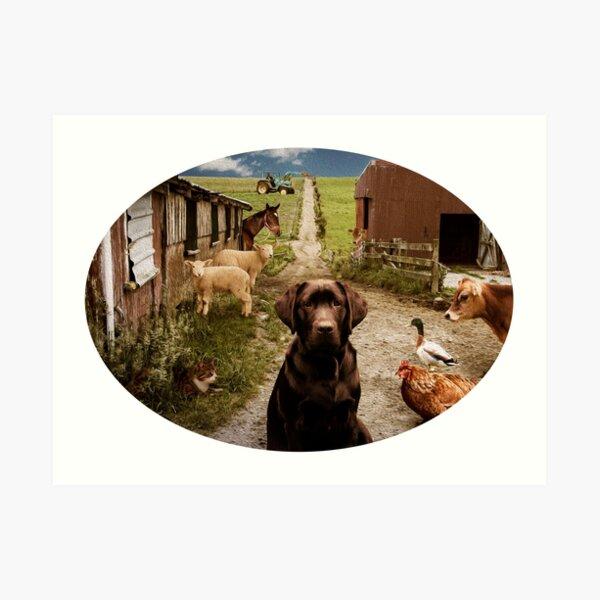 Country Life Farm Animals  Art Print