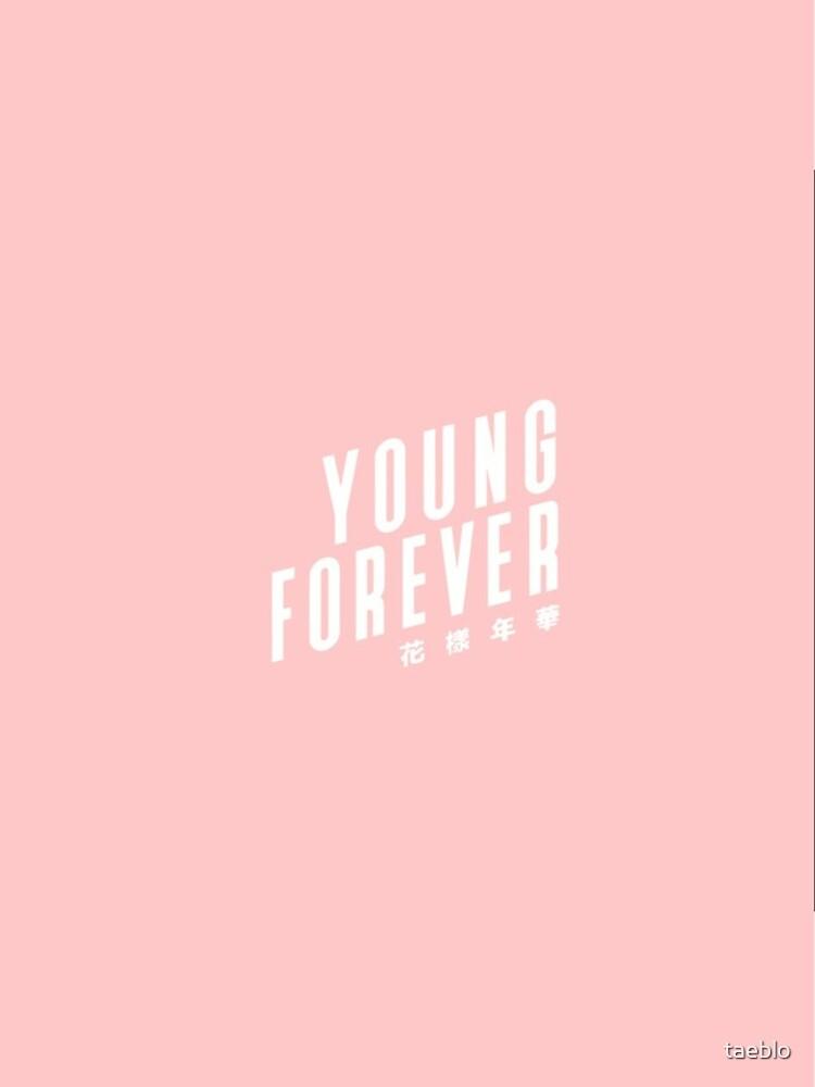 BTS Bangtan Boys Young Forever de taeblo