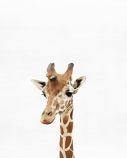Baby Giraffe, Kinderzimmer, Tier, Kinderzimmer, moderne Kunst ...