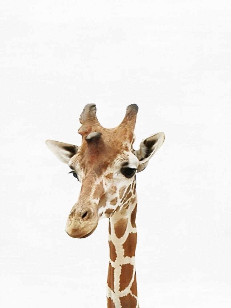 Baby Giraffe, Nursery, Animal, Kids room, Modern art, Wall decor by juliaemelian