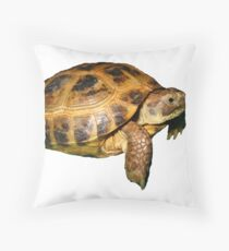 Greek Tortoise Throw Pillow