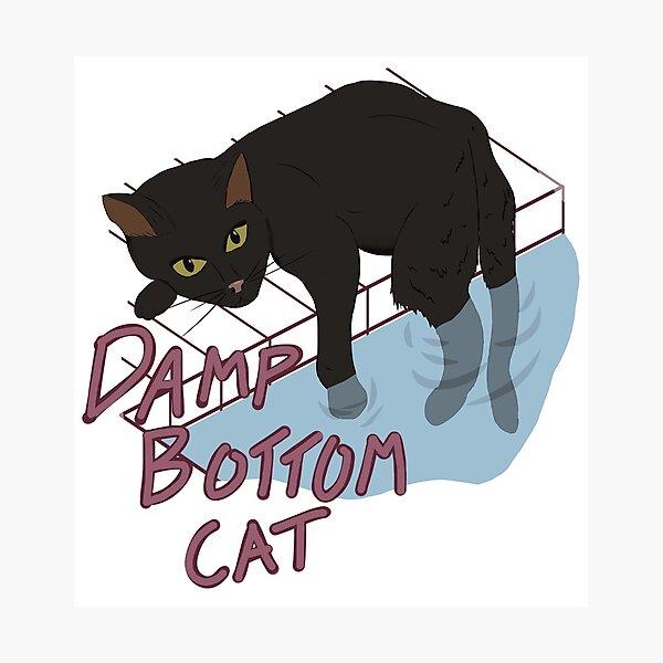 Damp Bottom Cat Black Photographic Print