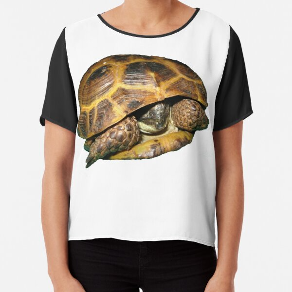 Greek Tortoises in Shell Chiffon Top