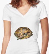 Greek Tortoises in Shell Women's Fitted V-Neck T-Shirt