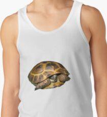 Greek Tortoises in Shell Tank Top