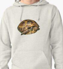 Greek Tortoises in Shell Pullover Hoodie