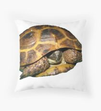 Greek Tortoises in Shell Throw Pillow