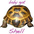 Tortoise - Baby Got Shell by LuckyTortoise