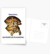 Tortoises - Some people shouldn't use the car pool lane Postcards