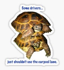 Tortoises - Some people shouldn't use the car pool lane Sticker