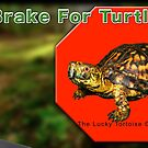 I Brake for Turtles by LuckyTortoise
