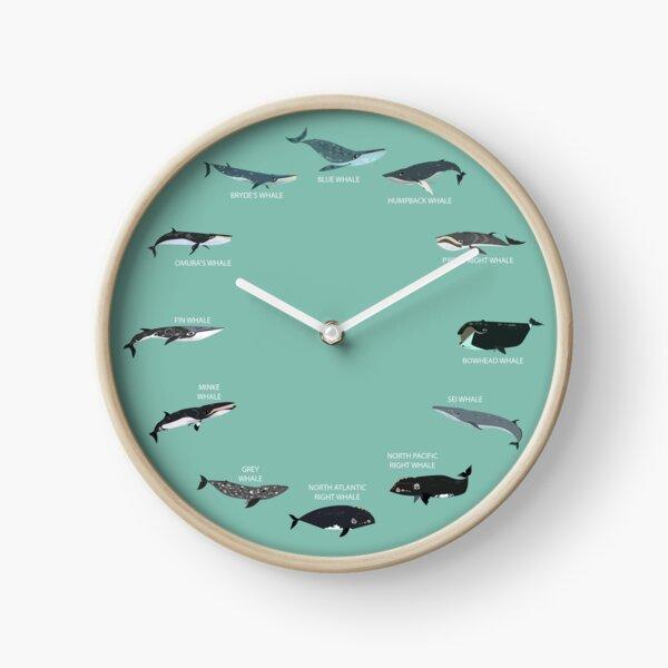 Baleen Whales Clock