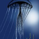 Jellyfish in Silhouette by Ray Cassel