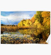 Autumn nature Poster