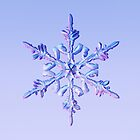 Snowflake-1 by Ray Cassel