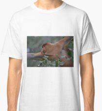 Male Proboscis monkey  Classic T-Shirt