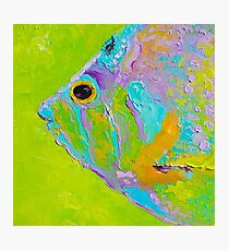 Colorful Tropical Fish painting Photographic Print