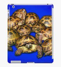 Greek Tortoise Group - Dark Blue iPad Case/Skin