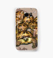 Greek Tortoise Group - Desert Camo Background Samsung Galaxy Case/Skin