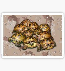 Greek Tortoise Group - Desert Camo Background Sticker