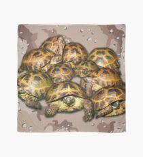 Greek Tortoise Group - Desert Camo Background Scarf