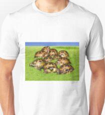 Greek Tortoise Group on Grass Background T-Shirt