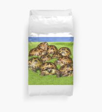 Greek Tortoise Group on Grass Background Duvet Cover