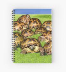 Greek Tortoise Group on Grass Background Spiral Notebook