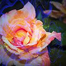 Swirling rose with atmospheric bling by ♥⊱ B. Randi Bailey