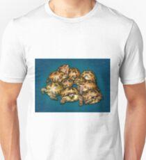 Greek Tortoise Group on Gray-Blue Background T-Shirt