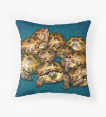 Greek Tortoise Group on Gray-Blue Background Throw Pillow