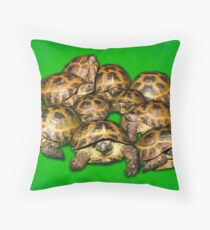 Greek Tortoise Group on Bright Green Background Throw Pillow