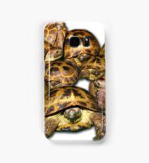 Greek Tortoise Group Samsung Galaxy Case/Skin