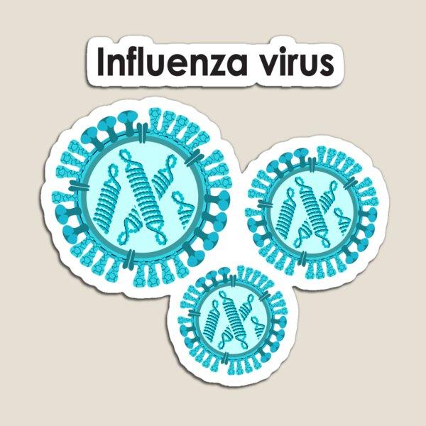 Influenza Virus Magnet