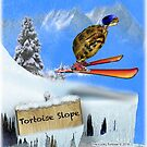 Skiing Tortoise Slope by LuckyTortoise