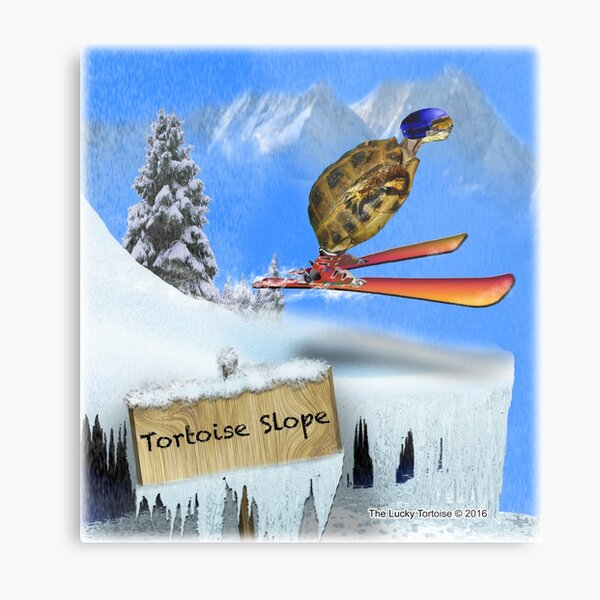 Skiing Tortoise Slope Metal Print