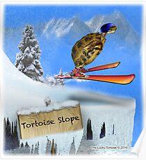 Skiing Tortoise Slope Poster