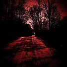 Riding through the darkness..C. O. D.  by jammingene