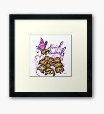 Tortoise Butterflies - Social Butterfly Framed Print