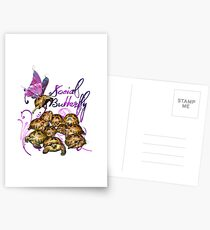 Tortoise Butterflies - Social Butterfly Postcards