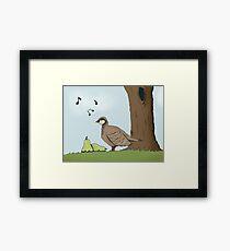 Partridge Framed Print