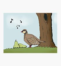Partridge Photographic Print