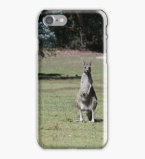 Trio of kangaroos iPhone Case/Skin