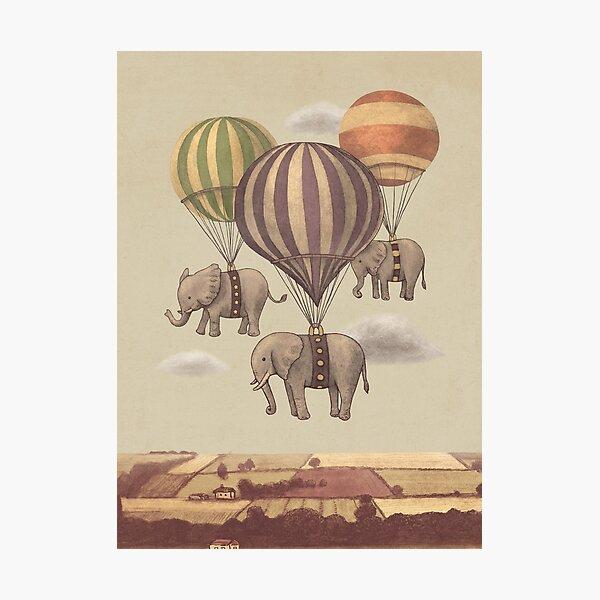 Flight of The Elephants  Photographic Print