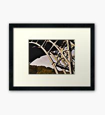 Ironbridge Structure Framed Print