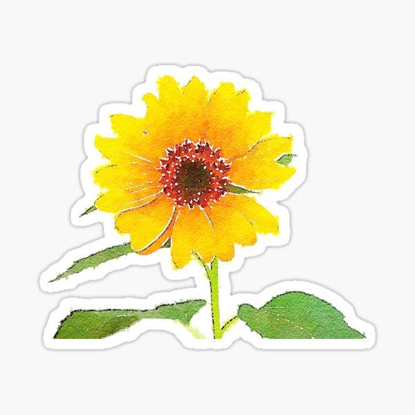 Sunflower in Watercolor Sticker