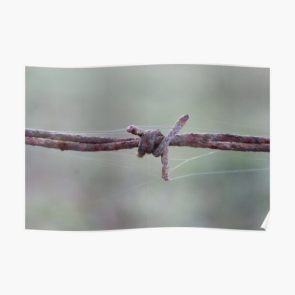 Rusty Barbed Wire Photo Poster